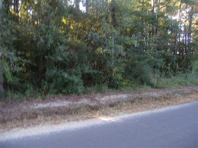 Traino Road, Ponchatoula, LA 70454 (MLS #2125200) :: Turner Real Estate Group