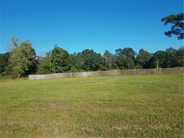 47054 Nekia Street, Hammond, LA 70401 (MLS #2127734) :: Crescent City Living LLC