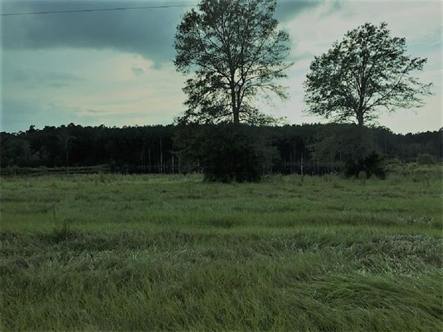 W New Arbor Road, Poplarville, MS 39470 (MLS #2127787) :: Turner Real Estate Group