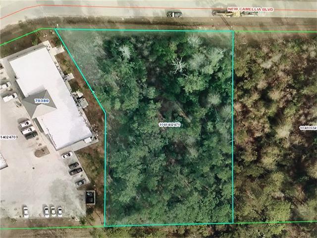 130 New Camellia Boulevard, Madisonville, LA 70447 (MLS #2128954) :: Turner Real Estate Group