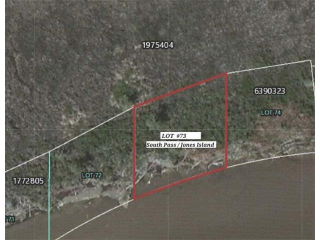 73 South Pass, Akers, LA 70421 (MLS #2131520) :: Turner Real Estate Group