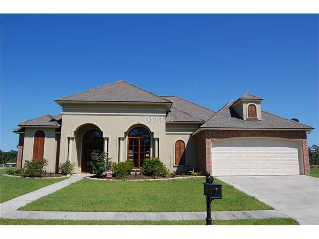 21446 Yellow Fin Drive, Springfield, LA 70462 (MLS #2134415) :: Turner Real Estate Group
