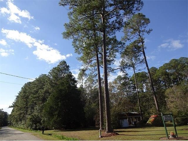 29302 Dinkins Loop, Lacombe, LA 70445 (MLS #2135122) :: Turner Real Estate Group