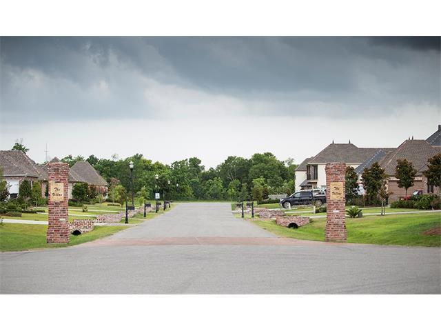 113 Oak Park Court, Belle Chasse, LA 70037 (MLS #2138350) :: Turner Real Estate Group
