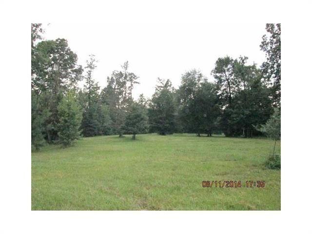 Youngs Road, Bogalusa, LA 70427 (MLS #2138989) :: Turner Real Estate Group