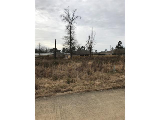 36 Village Oaks Boulevard, Ponchatoula, LA 70454 (MLS #2139611) :: Turner Real Estate Group