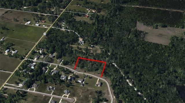Jericho Drive, Albany, LA 70711 (MLS #2140617) :: Turner Real Estate Group
