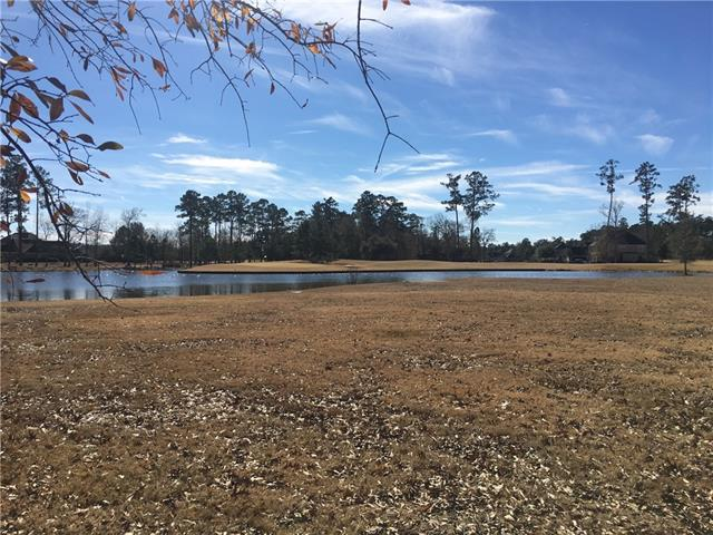 30648 Carter Cemetery Road, Springfield, LA 70462 (MLS #2141976) :: Crescent City Living LLC