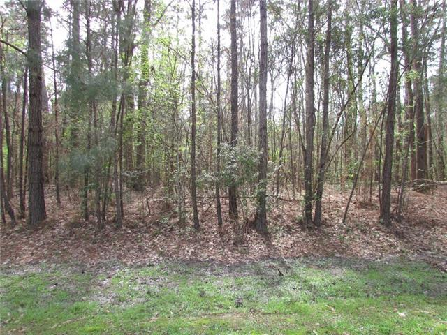Black River Lot 76 Drive, Madisonville, LA 70447 (MLS #2144295) :: Turner Real Estate Group