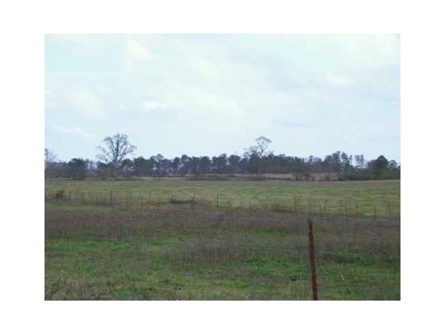 54163 Sweetwater Rd - Photo 1