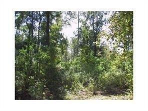 Lot 4-A1 Military Heights Drive, Covington, LA 70435 (MLS #2145393) :: The Robin Group of Keller Williams