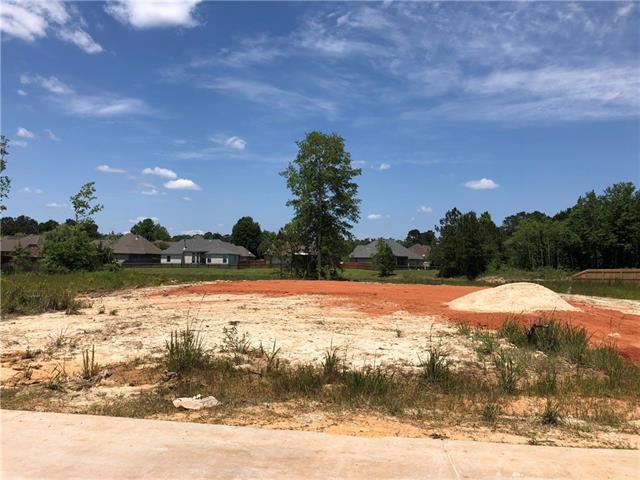 1037 Fox Sparrow Loop, Madisonville, LA 70447 (MLS #2151169) :: Turner Real Estate Group