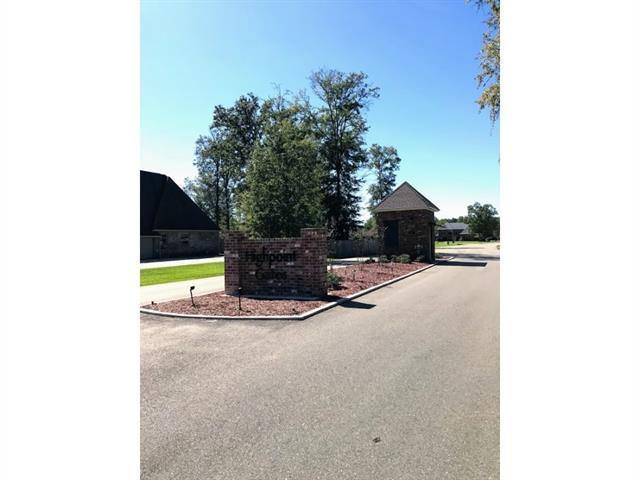 Highpoint Drive, Tickfaw, LA 70466 (MLS #2153109) :: Parkway Realty
