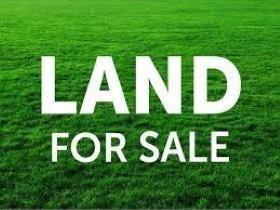 58221 Loblolly Lane, Slidell, LA 70460 (MLS #2153700) :: Turner Real Estate Group