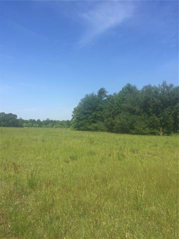 100.93 +/- ACRES 25 Highway, Folsom, LA 70437 (MLS #2154087) :: Turner Real Estate Group