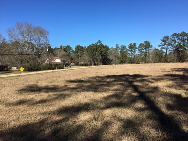 Happy Woods Road, Ponchatoula, LA 70454 (MLS #2156375) :: Turner Real Estate Group