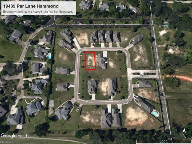 19438 Par Lane Lane, Hammond, LA 70401 (MLS #2160787) :: Turner Real Estate Group