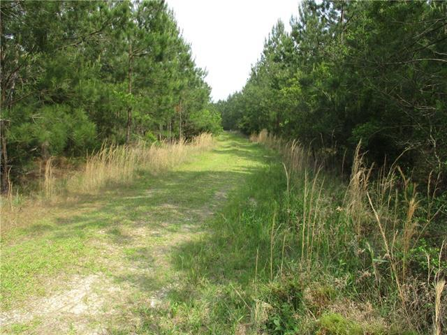 Sunny Hill Road, Franklinton, LA 70438 (MLS #2161166) :: Watermark Realty LLC
