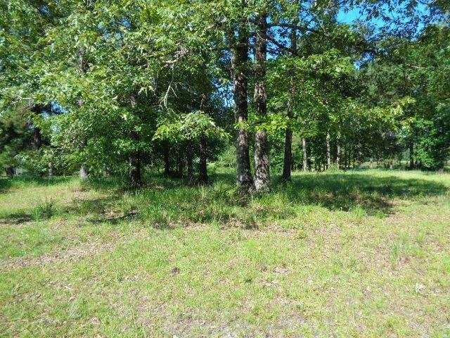 Peach Orchard Road, Bogalusa, LA 70427 (MLS #2167775) :: Turner Real Estate Group
