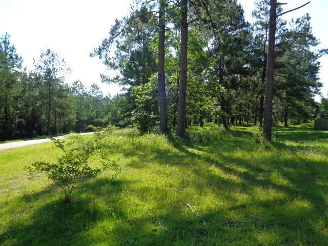 Greentree Drive, Bogalusa, LA 70427 (MLS #2167779) :: Turner Real Estate Group