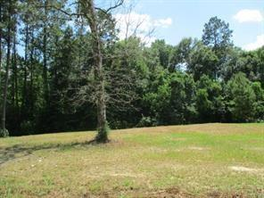 50 Twin Pine Street, Tickfaw, LA 70466 (MLS #2169246) :: Turner Real Estate Group