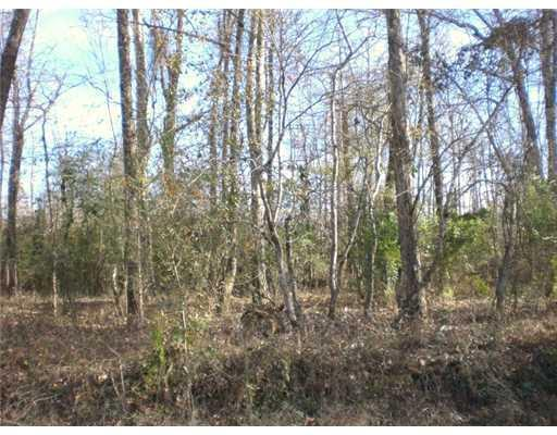 Pushpetappa Cutoff Road, Bogalusa, LA 70427 (MLS #2172379) :: Watermark Realty LLC