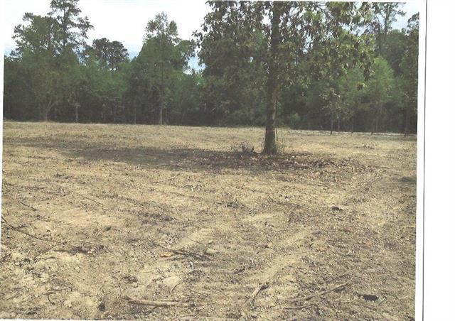 Lot 2B Pine Street, Covington, LA 70433 (MLS #2174736) :: Turner Real Estate Group