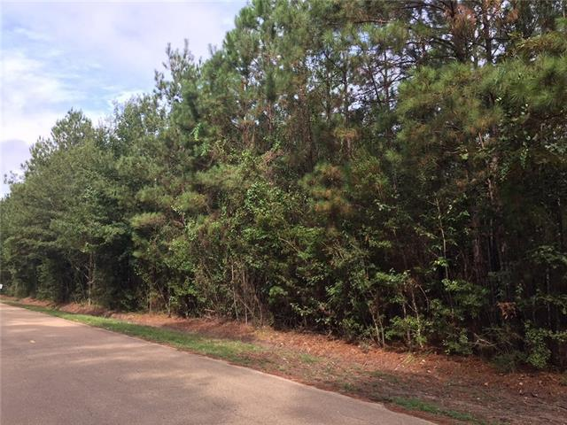 Crown Drive, Ponchatoula, LA 70454 (MLS #2175171) :: Crescent City Living LLC