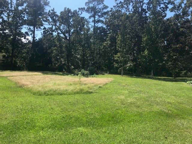Serenity Lane, Madisonville, LA 70447 (MLS #2176079) :: Turner Real Estate Group