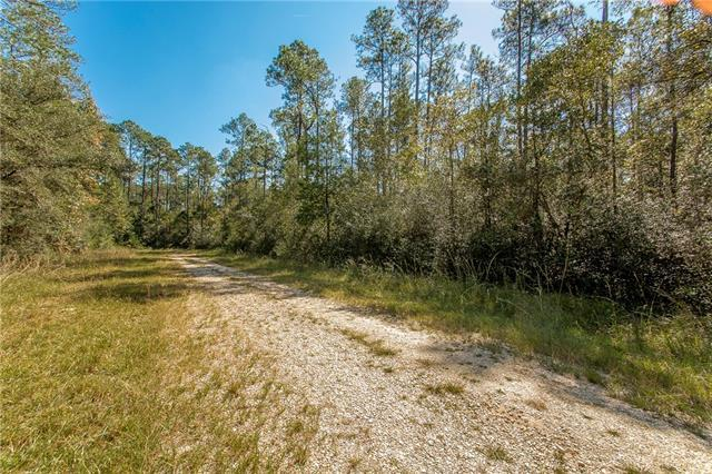 Lot 123 Burke Drive, Abita Springs, LA 70420 (MLS #2179272) :: Turner Real Estate Group
