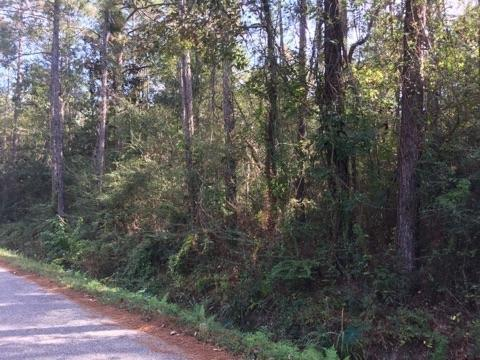 Lot 5 Durnin (Vacant Land) Drive, Lacombe, LA 70445 (MLS #2180450) :: Top Agent Realty