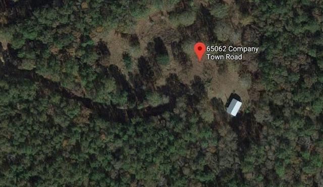 65062 Company Town Road, Kentwood, LA 70444 (MLS #2180923) :: Inhab Real Estate