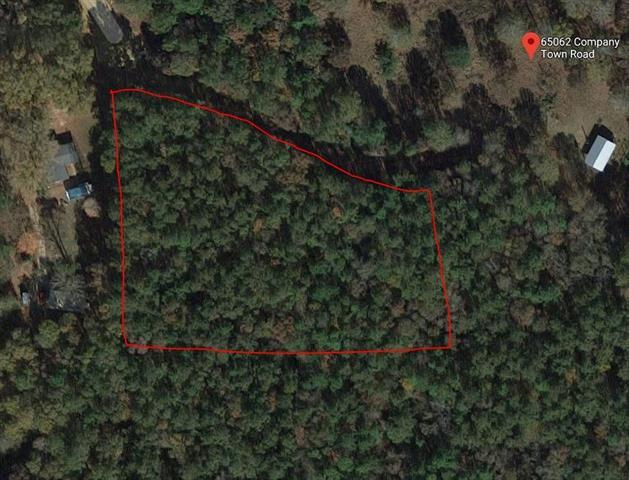 Company Town Road, Kentwood, LA 70444 (MLS #2180953) :: Inhab Real Estate