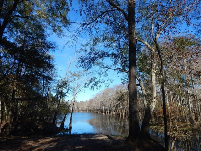 476 Old 35 South Highway, Sandy Hook, MS 39478 (MLS #2183819) :: Top Agent Realty