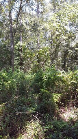 0 Diamond Radar Road, Perkinston, MS 39573 (MLS #2190664) :: Top Agent Realty