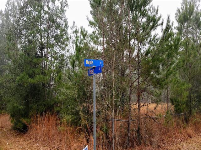 Lot 5A Maple Street, Mandeville, LA 70448 (MLS #2190829) :: Top Agent Realty