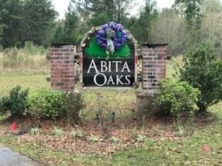 Abita Oaks Loop, Abita Springs, LA 70420 (MLS #2191717) :: Parkway Realty
