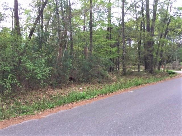 Hwy 59 Highway, Abita Springs, LA 70420 (MLS #2194387) :: Watermark Realty LLC