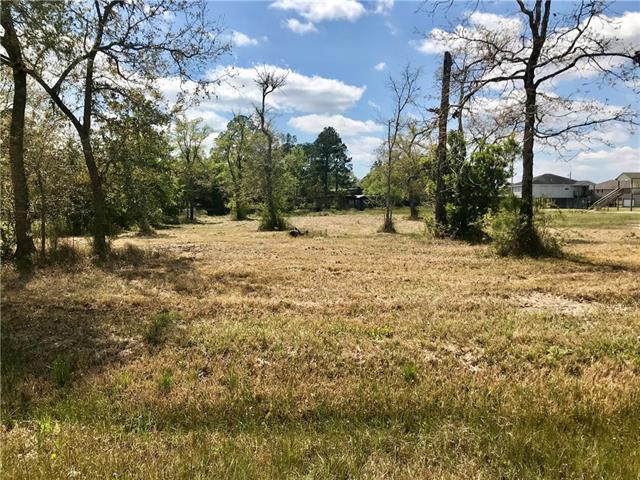 5155 N Tampa Drive, Pearlington, MS 39572 (MLS #2195494) :: ZMD Realty