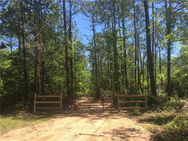 Alicia Street, Pass Christian, MS 39571 (MLS #2202816) :: Top Agent Realty