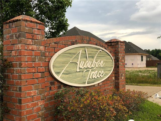 Audubon Drive, Hammond, LA 70403 (MLS #2204350) :: Turner Real Estate Group
