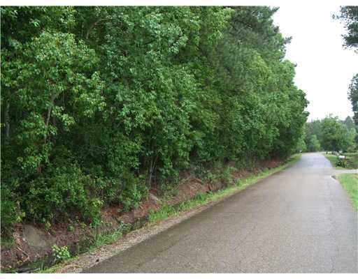 Graci Road, Folsom, LA 70437 (MLS #2204623) :: Crescent City Living LLC