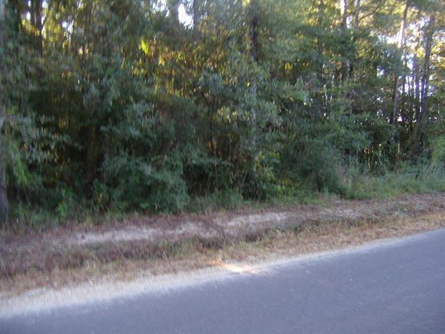 Traino Road, Ponchatoula, LA 70454 (MLS #2205015) :: Crescent City Living LLC