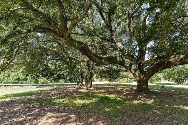 400 Exnicious Road, Folsom, LA 70437 (MLS #2205157) :: Top Agent Realty