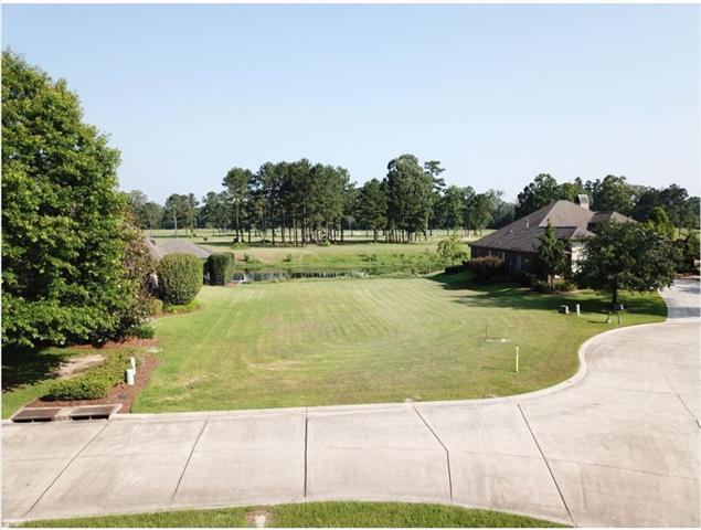 24206 Snowy Egret Cove, Springfield, LA 70462 (MLS #2207139) :: Crescent City Living LLC