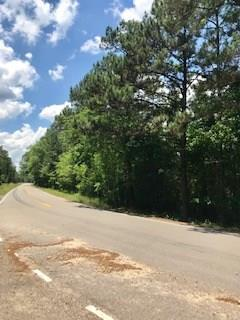Hwy 438 Highway, Angie, LA 70426 (MLS #2209085) :: Top Agent Realty
