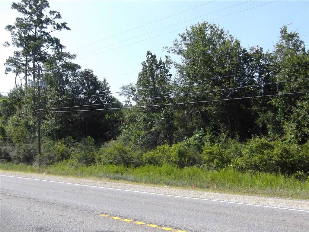 Hwy 190 Highway - Photo 1