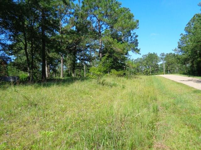 Greentree Drive, Bogalusa, LA 70427 (MLS #2215352) :: Top Agent Realty