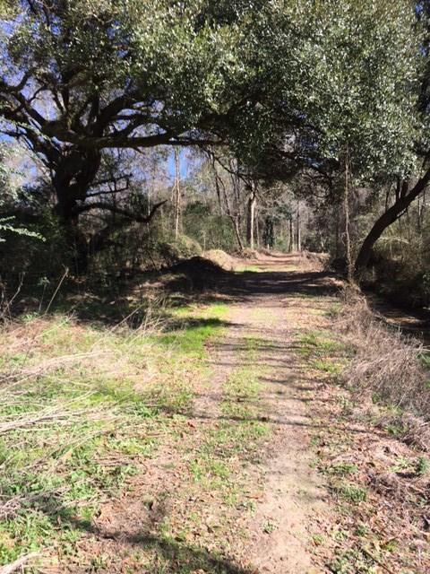 Jolane Drive, Ponchatoula, LA 70454 (MLS #2217065) :: ZMD Realty