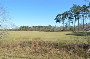 26068 Hwy 25 Highway, Franklinton, LA 70438 (MLS #2218960) :: Crescent City Living LLC